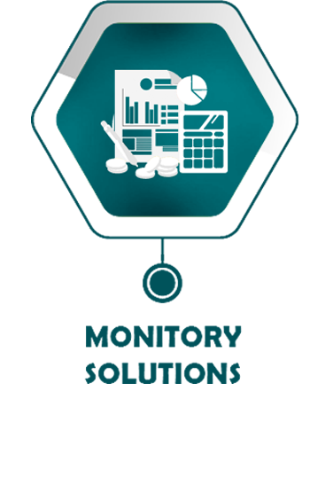 monitory solutions